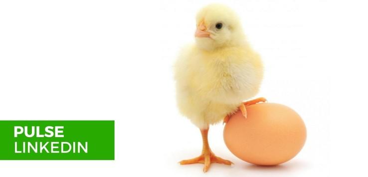 Linkedin Pulse - meglio l'uovo oggi o la gallina domani